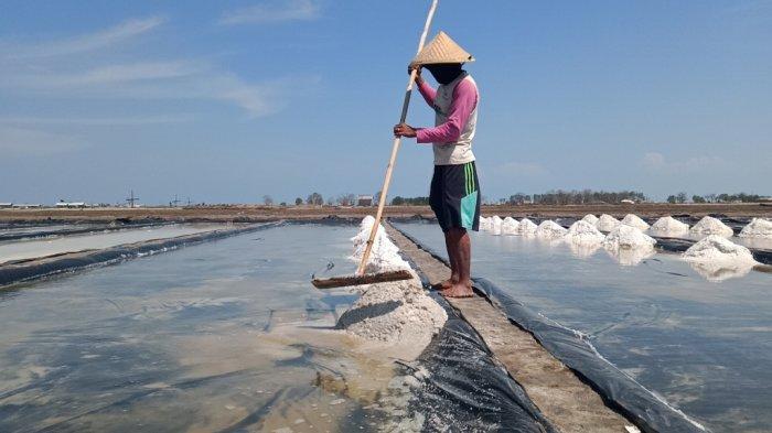 PT Agro Jabar siap serap produksi garam petani lokal