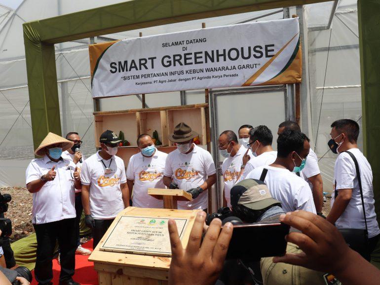 Kenalkan Teknologi Smart Greenhouse, Ridwan Kamil: Panen Jagung Bakal Meningkat