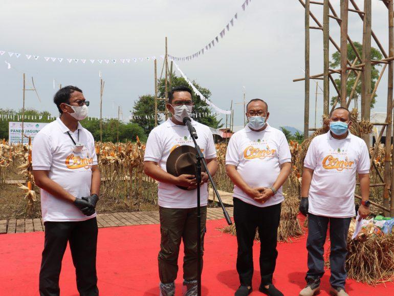 PT Agro Jabar Kini Lirik Bisnis Sapi dan Lobster